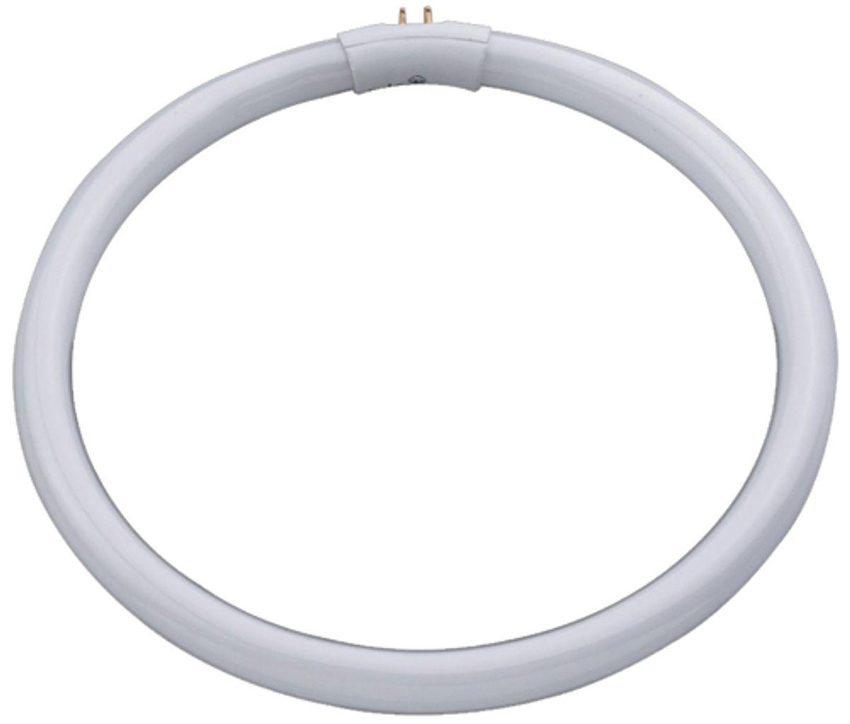 Tube circulaire lumière du jour - 22 watts